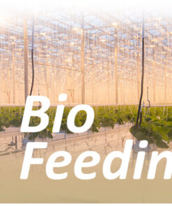 Greenhouse Feeding Bio